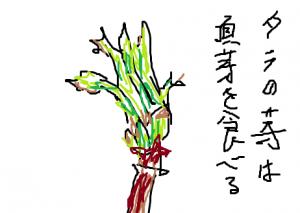 Photo_20210501005401